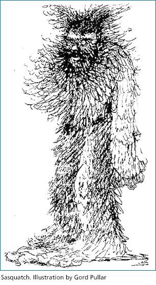 Sasquatch. Illustration by Gord Pullar