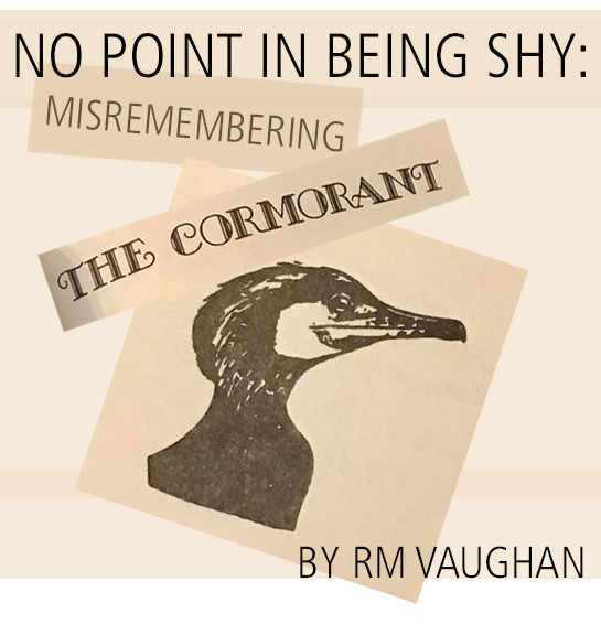 No Point in Being Shy: Misremembering The Cormorant by RM Vaughan