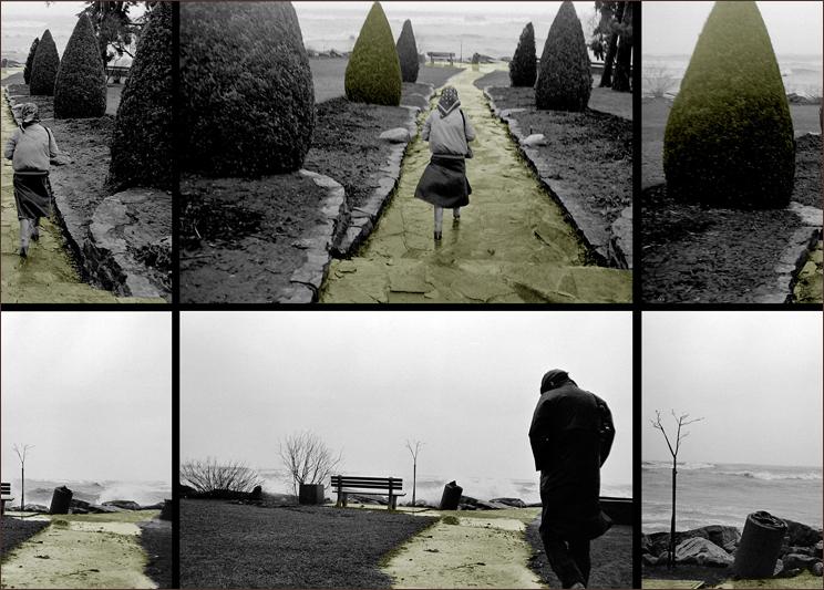 Detail: Gairloch Gardens by Cees and Annerie van Gemerden