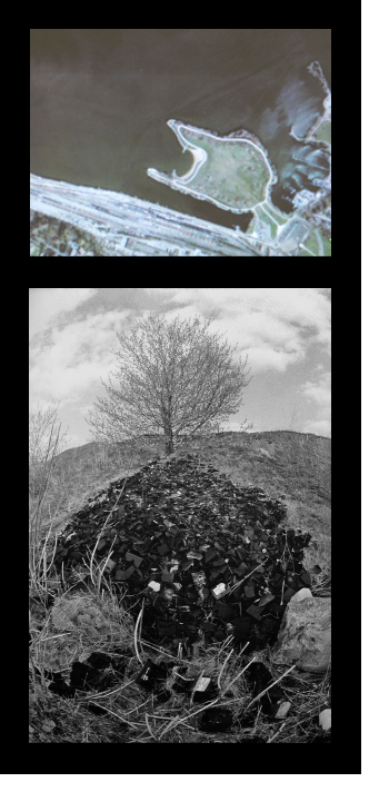 ABOVE: Aerial view of Bayfront Park, Hamilton, Canada (formerly known as The Lax Lands). BELOW: Maple Tree Versus Battery Cases: photograph by Cees van Gemerden.