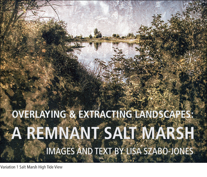 OVERLAYING AND EXTRACTING LANDSCAPES: A REMNANT SALT MARSH / IMAGES AND TEXT BY LISA SZABO-JONES