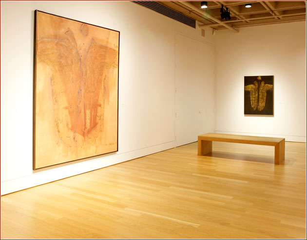 Robert Mason - Installation View - Art Gallery of Hamilton, 2010