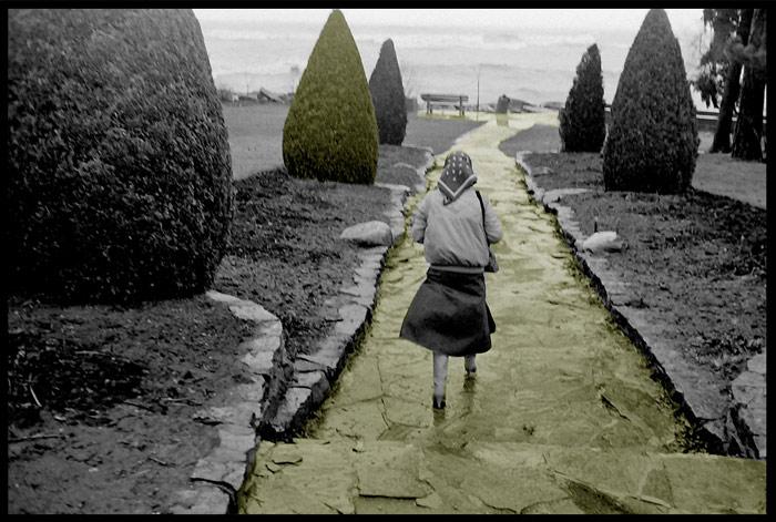 Cees & Annerie van Gemerden: Gairloch Gardens