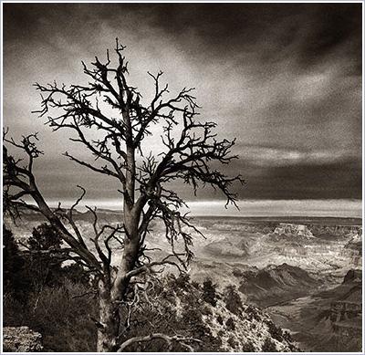 Ryan Szulc: An East Wind